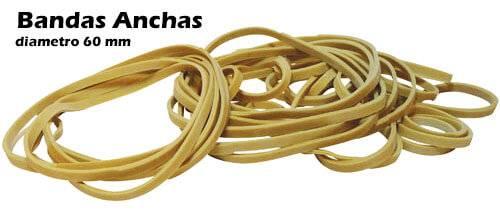 Bandas Elasticas Credencial Ancha 60mm Caja X 100 Grs