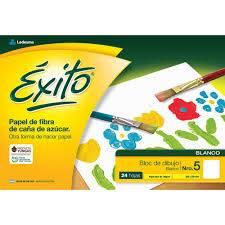 Block De Dibujo Nº5 Éxito X 24 Hjs Blanco