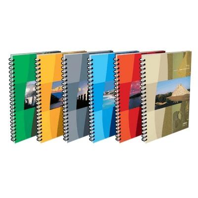 Cuaderno América 29,7 C/esp X 80 Hjs Cuadriculado