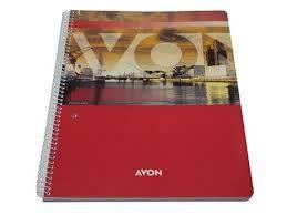 Cuaderno Ledesma Avon 29,7 C/esp X 84 Hjs Rayado