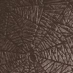 Papel Araña Negro